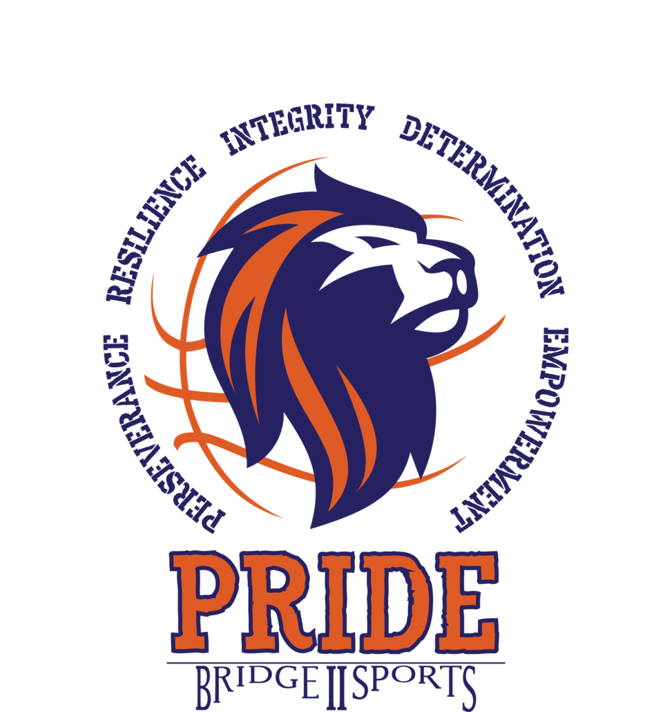 Wheelchair Basketball Bridge Ii Sports Team Pride Bridge Ii Sports