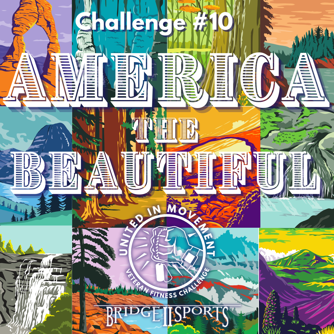 Graphic displaying 12 colorful drawings of different national park locations. Text reads Challenge #10 America the Beautiful. Veteran Fitness Challenge Logo and Bridge 2 Sports logo beneath.